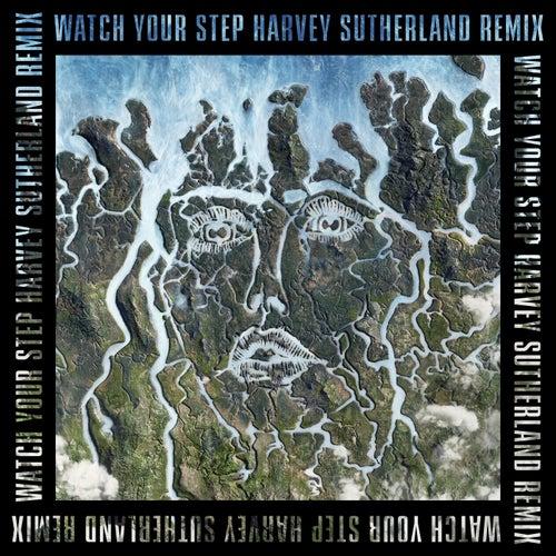 Watch Your Step (Harvey Sutherland Remix) de Disclosure