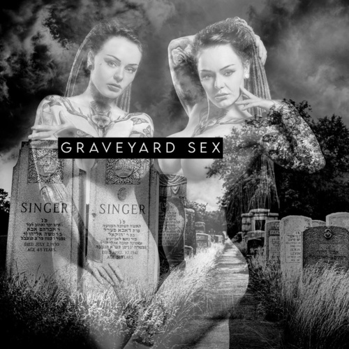 Graveyard Sex by Chris Connelly