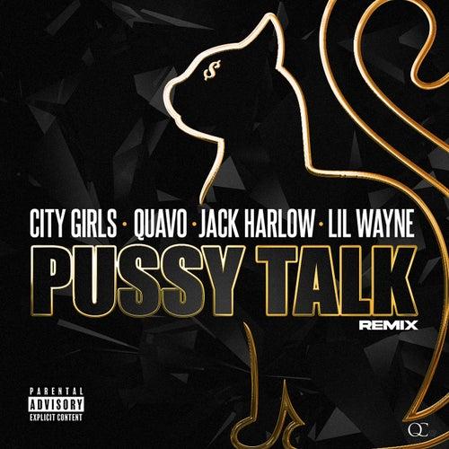 Pussy Talk (Remix) by City Girls, Quavo & Lil Wayne