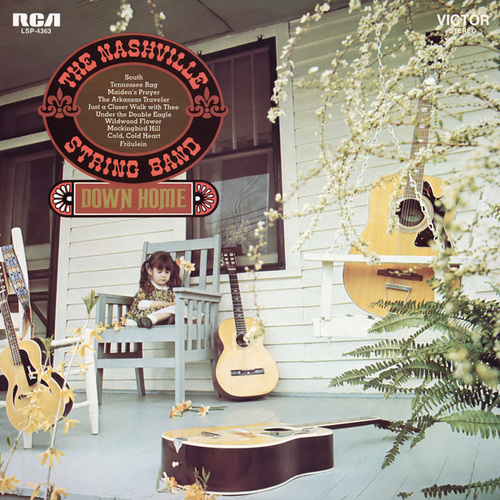 Down Home by The Nashville String Band