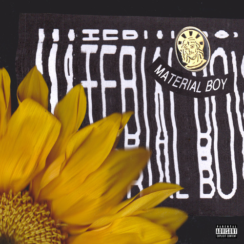 Material Boy (Acoustic) de Sir Sly