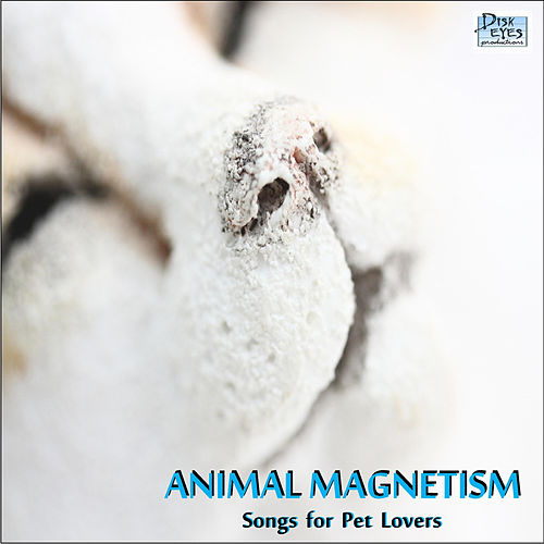 Animal Magnetism Vol. 1 by Animal Magnetism