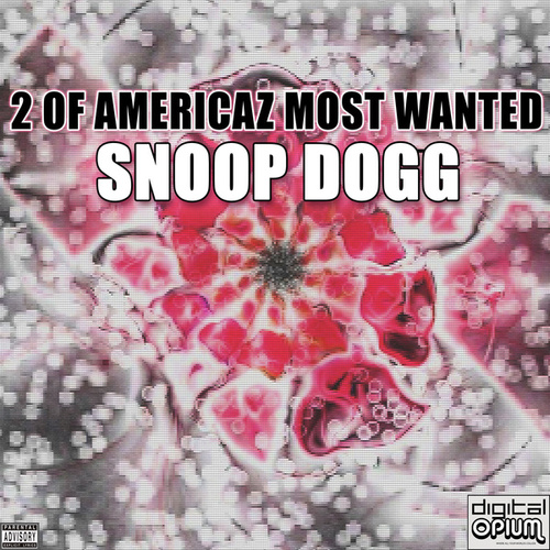 2 Of Americaz Most Wanted von Snoop Dogg
