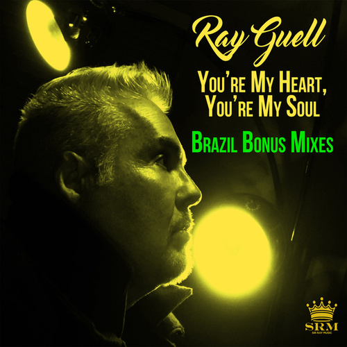 You're My Heart, You're My Soul (Brazil Bonus Mixes) von Ray Guell