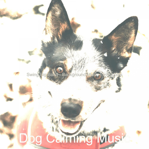 Swing Big Band - Background Music for Puppies de Dog Calming Music