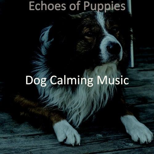 Echoes of Puppies de Dog Calming Music
