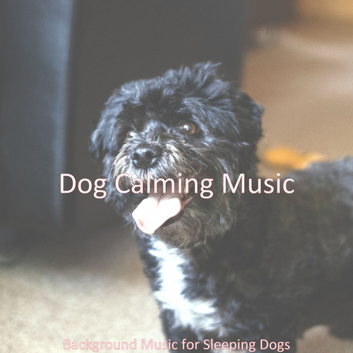 Background Music for Sleeping Dogs de Dog Calming Music