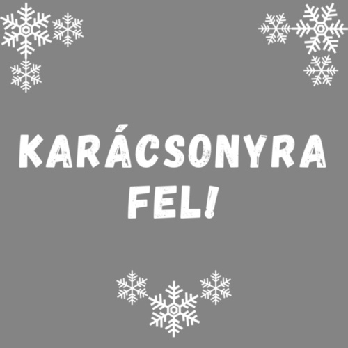 Karácsonyra Fel! von Various Artists