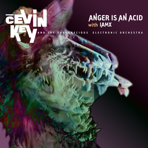 Anger is an Acid by cEVIN Key