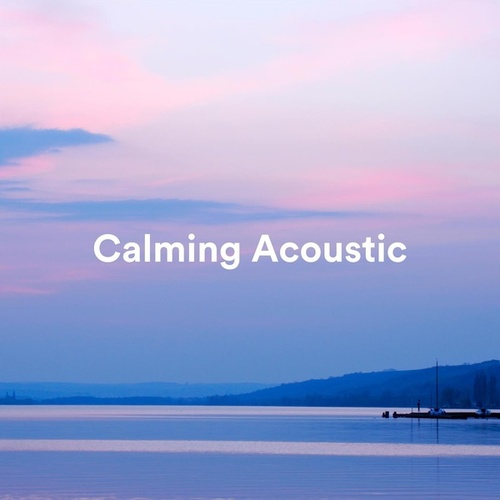 Calming Acoustic de Various Artists