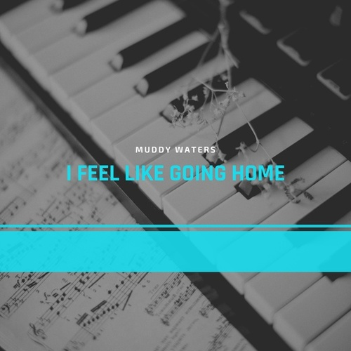 I Feel Like Going Home von Muddy Waters