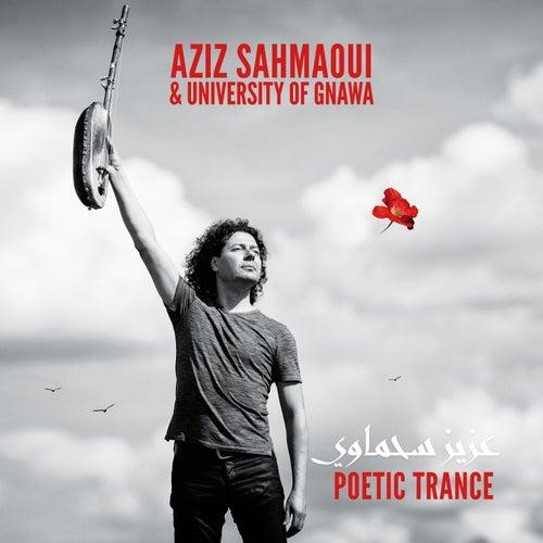 Poetic Trance by Aziz Sahmaoui