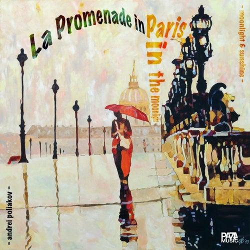 La Promenade in Paris in the Moonlight by Andrei Poliakov