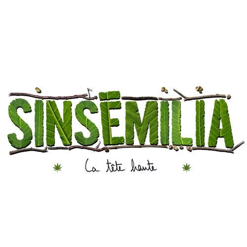La tête haute by Sinsemilia