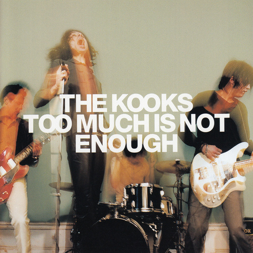 Too Much Is Not Enough de The Kooks