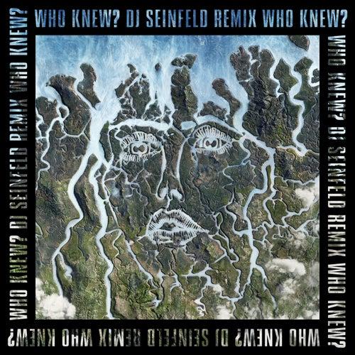 Who Knew? (DJ Seinfeld Remix) von Disclosure