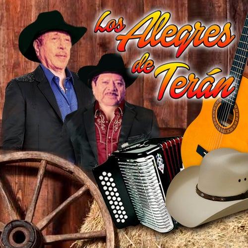 Los Alegres de Terán by Los Alegres de Teran