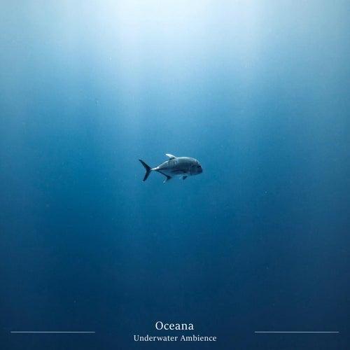 Underwater Ambience von Oceana