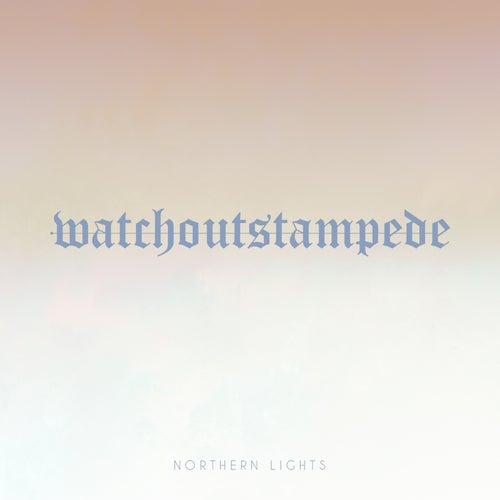 Northern Lights (Instrumental) fra Watch Out Stampede