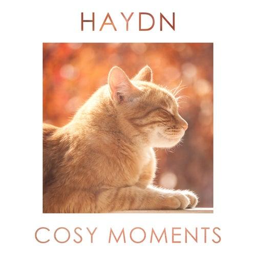 Haydn Cosy Moments von Franz Joseph Haydn