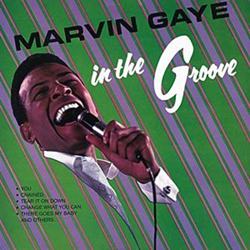 In The Groove de Marvin Gaye