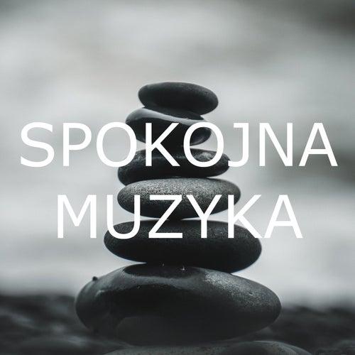 Spokojna Muzyka by Various Artists