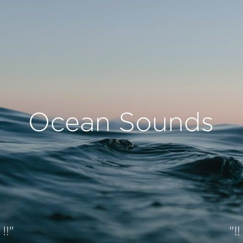 !!' Ocean Sounds '!! by Ocean Sounds (1)