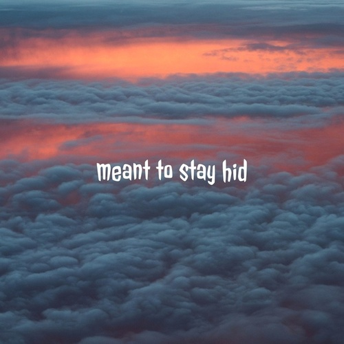 meant to stay hid by M Lohi M