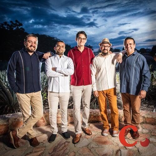 Flor de Azalea by Grupo Musical Canela