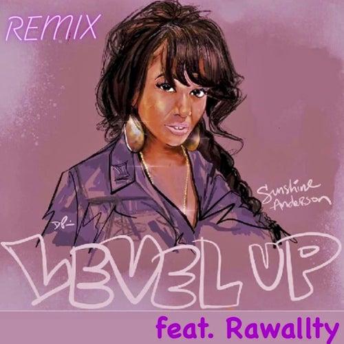 Level up (Remix) de Sunshine Anderson