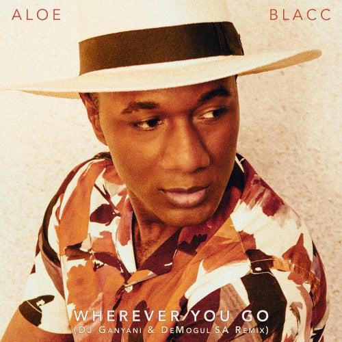 Wherever You Go (DJ Ganyani & De Mogul SA Remix) by Aloe Blacc