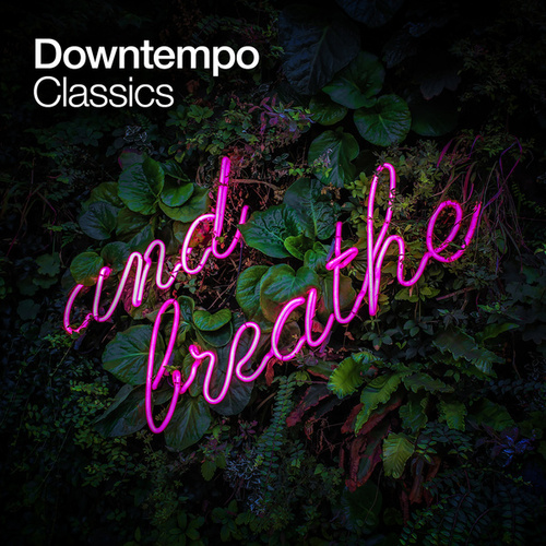 Downtempo Classics de Various Artists