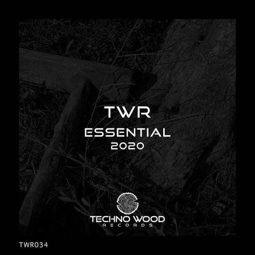 ESSENTIAL 2020 de Techno Wood Records