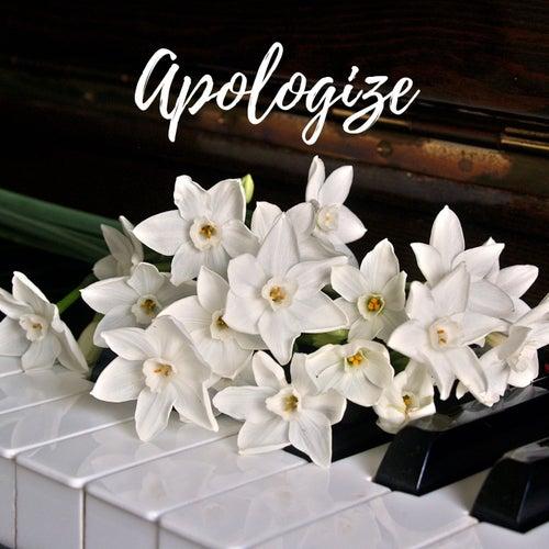 Apologize (Piano Version) von Angel Lover
