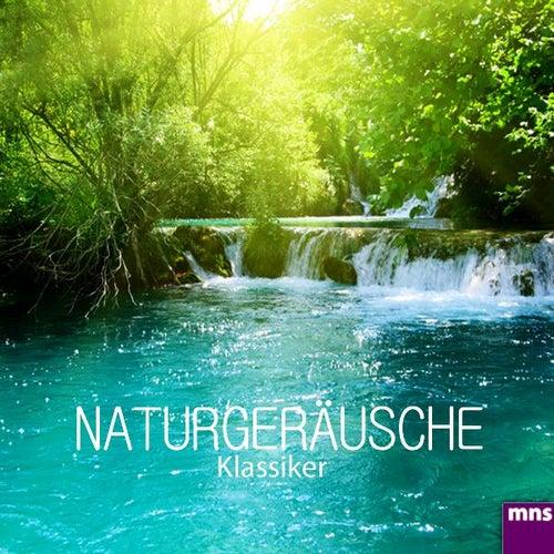 Naturgeräusche Klassiker von Entspannungsmusik