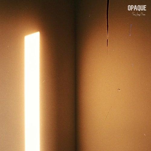 Opaque fra Su Jung Moon