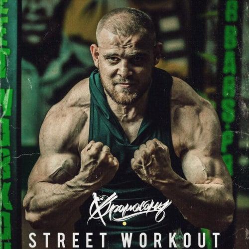 Street Workout by ХромосомЫ