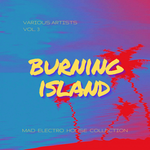 Burning Island (Mad Electro House Collection), Vol. 3 by Various Artists