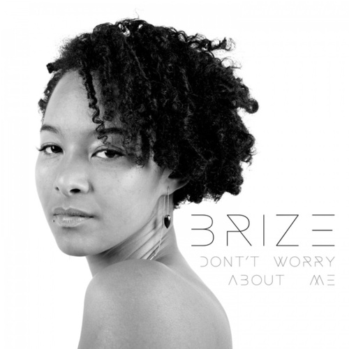 Don't Worry About Me by Brize