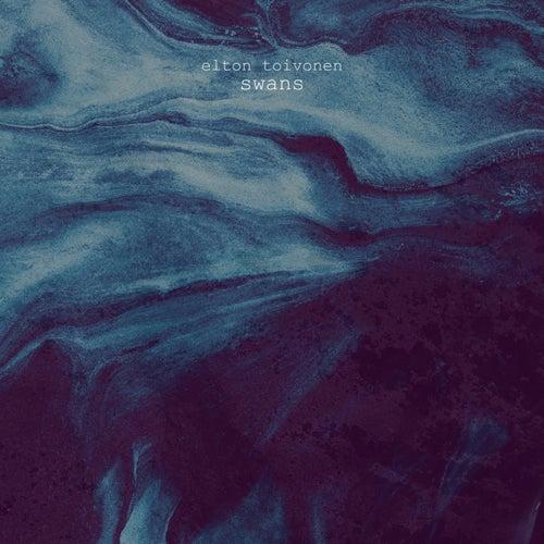 Swans by Elton Toivonen
