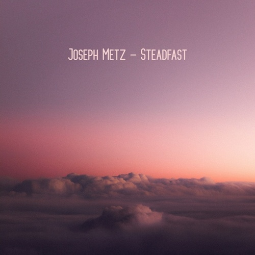 Steadfast by Joseph Metz