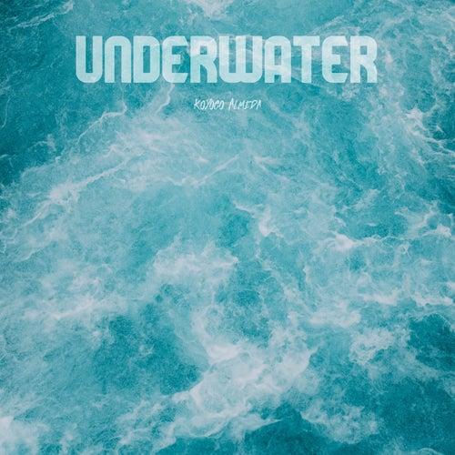 Underwater fra Koyogo Almeda
