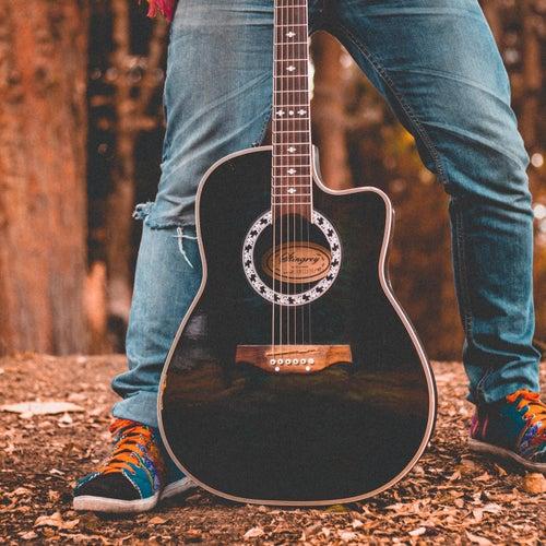 Acoustic Sounds by Joan Baez