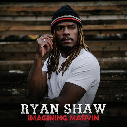 Imagining Marvin de Ryan Shaw