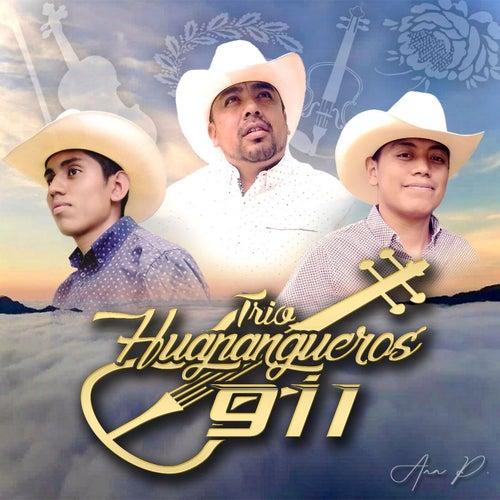 Que no se acabe El Huapango by Trío Huapangueros 911