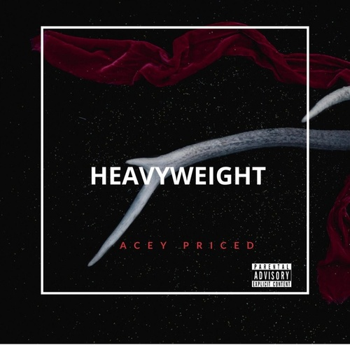 Heavyweight by Acey Priced
