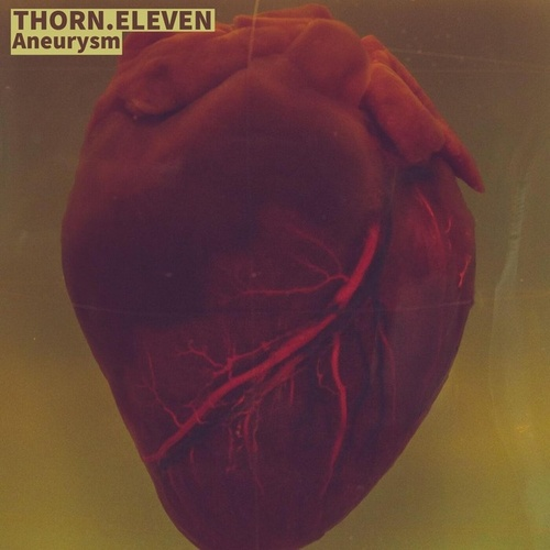 Aneurysm von Thorn Eleven