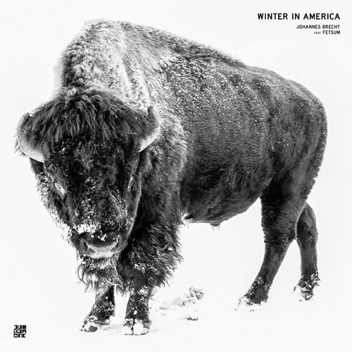 Winter in America de Johannes Brecht