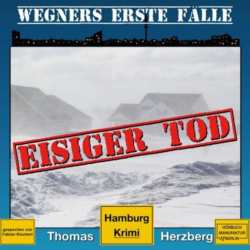 Eisiger Tod - Wegners erste Fälle - Hamburg Krimi, Band 1 (ungekürzt) von Thomas Herzberg