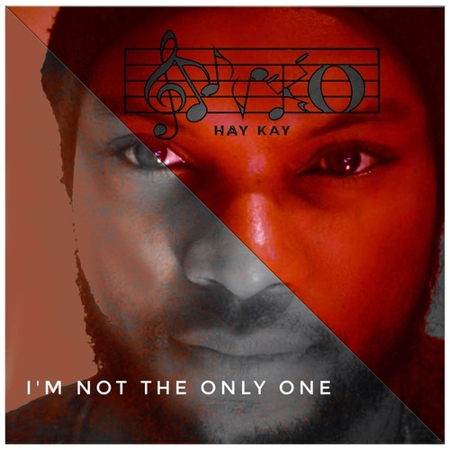 I'm Not The Only One (Cover) de Nyko Hay Kay